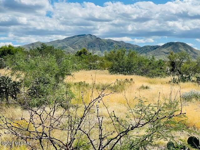 894 S Judson Avenue #28, Vail, AZ 85641 (#22125012) :: Kino Abrams brokered by Tierra Antigua Realty