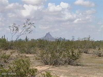36134 S Ashburn Trail, Marana, AZ 85658 (#22126400) :: Kino Abrams brokered by Tierra Antigua Realty
