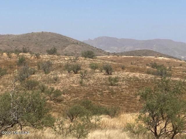 W Purple Mountain Trail W, Arivaca, AZ 85601 (MLS #22126809) :: My Home Group