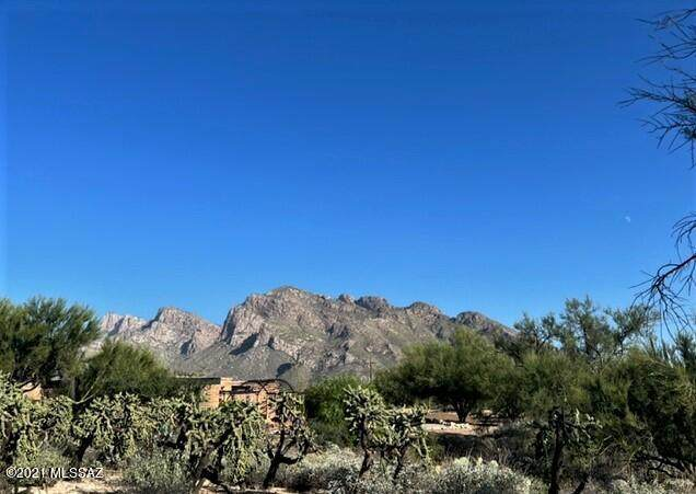 820 W Linda Vista Boulevard #21, Tucson, AZ 85704 (#22127275) :: Tucson Property Executives