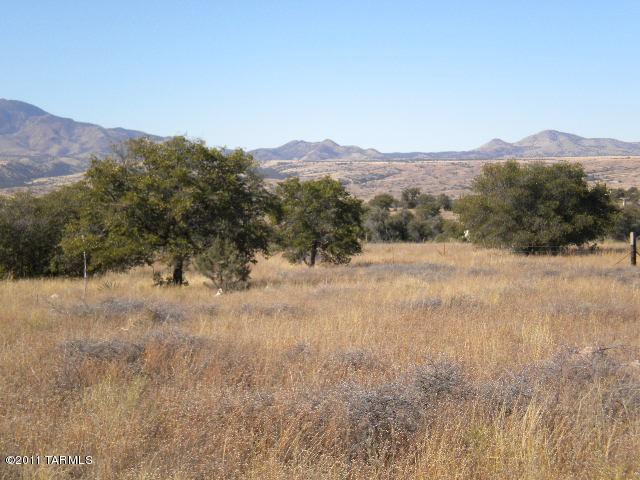 48 Collie Drive S #40, Sonoita, AZ 85637 (#21406545) :: Long Realty Company