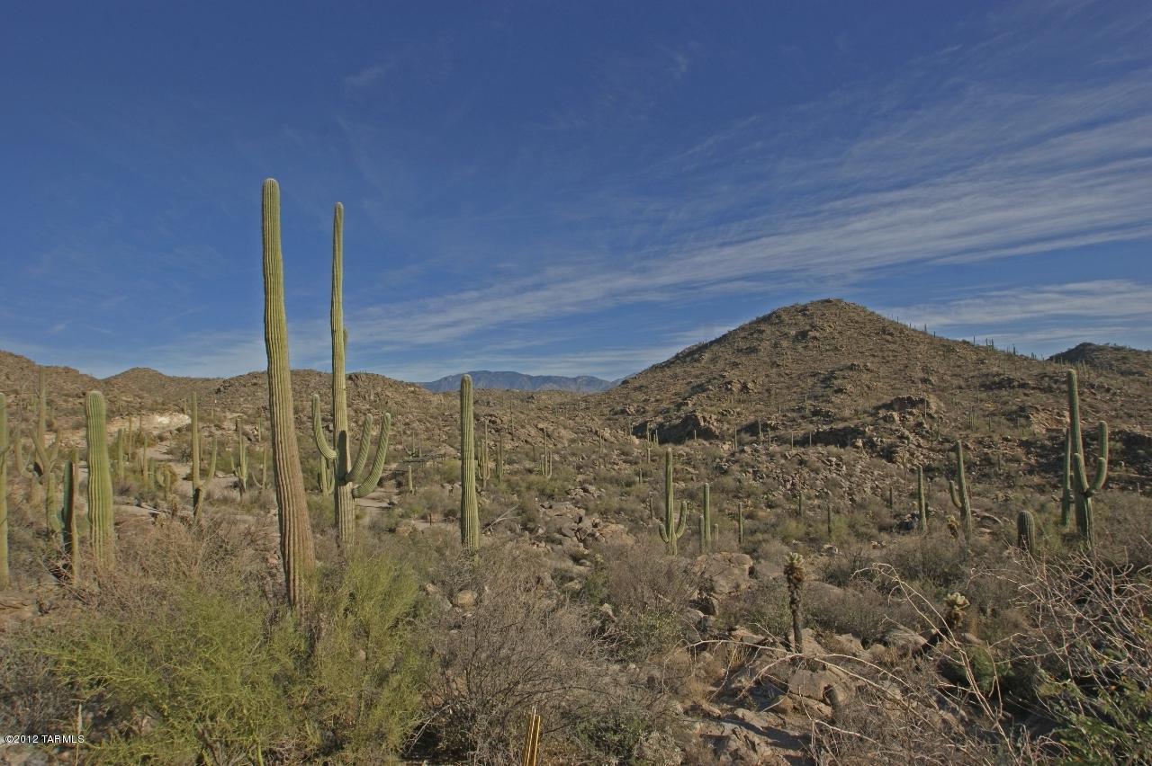 3517 Old Saguaro Ranch Road - Photo 1