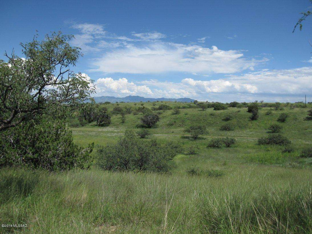 26574 Old Sonoita Highway - Photo 1