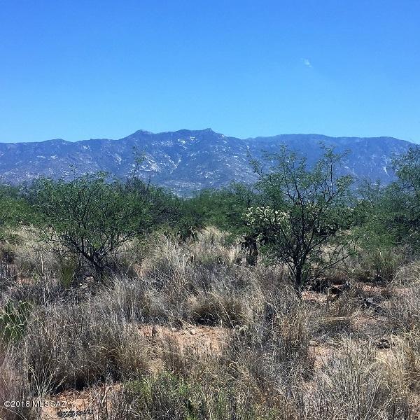 0000 E Pinal Street, Catalina, AZ 85739 (#21816543) :: Long Realty Company
