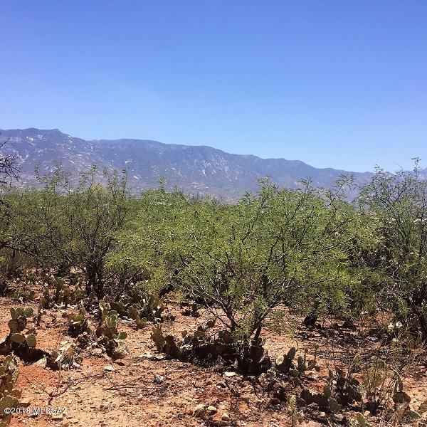 0000 E Pinal Street, Catalina, AZ 85739 (#21816545) :: Long Realty Company
