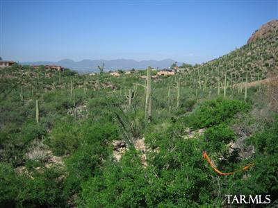 7501 N Secret Canyon Drive #0, Tucson, AZ 85718 (#21832971) :: Long Realty - The Vallee Gold Team