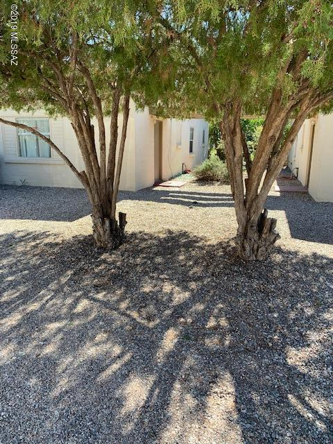 4826 E 1St Street, Tucson, AZ 85711 (#21901984) :: The KMS Team