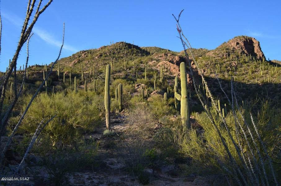 7292 Stone Canyon Drive - Photo 1