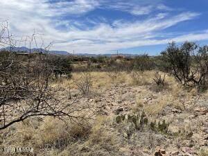 964 Calle Coyote #54, Rio Rico, AZ 85648 (#22109364) :: Tucson Real Estate Group