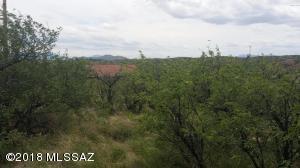 371 Paseo Picamaderos #76, Rio Rico, AZ 85648 (#21800925) :: Long Realty - The Vallee Gold Team