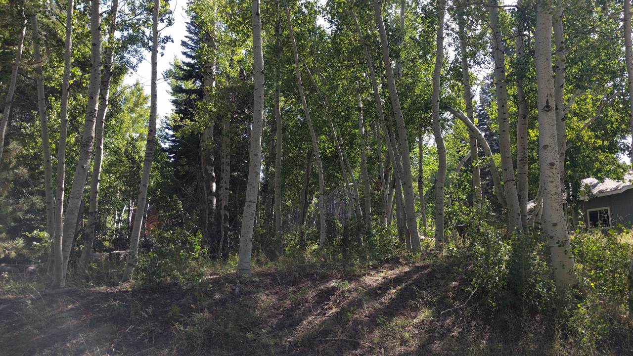 00 Aspen Drive - Photo 1
