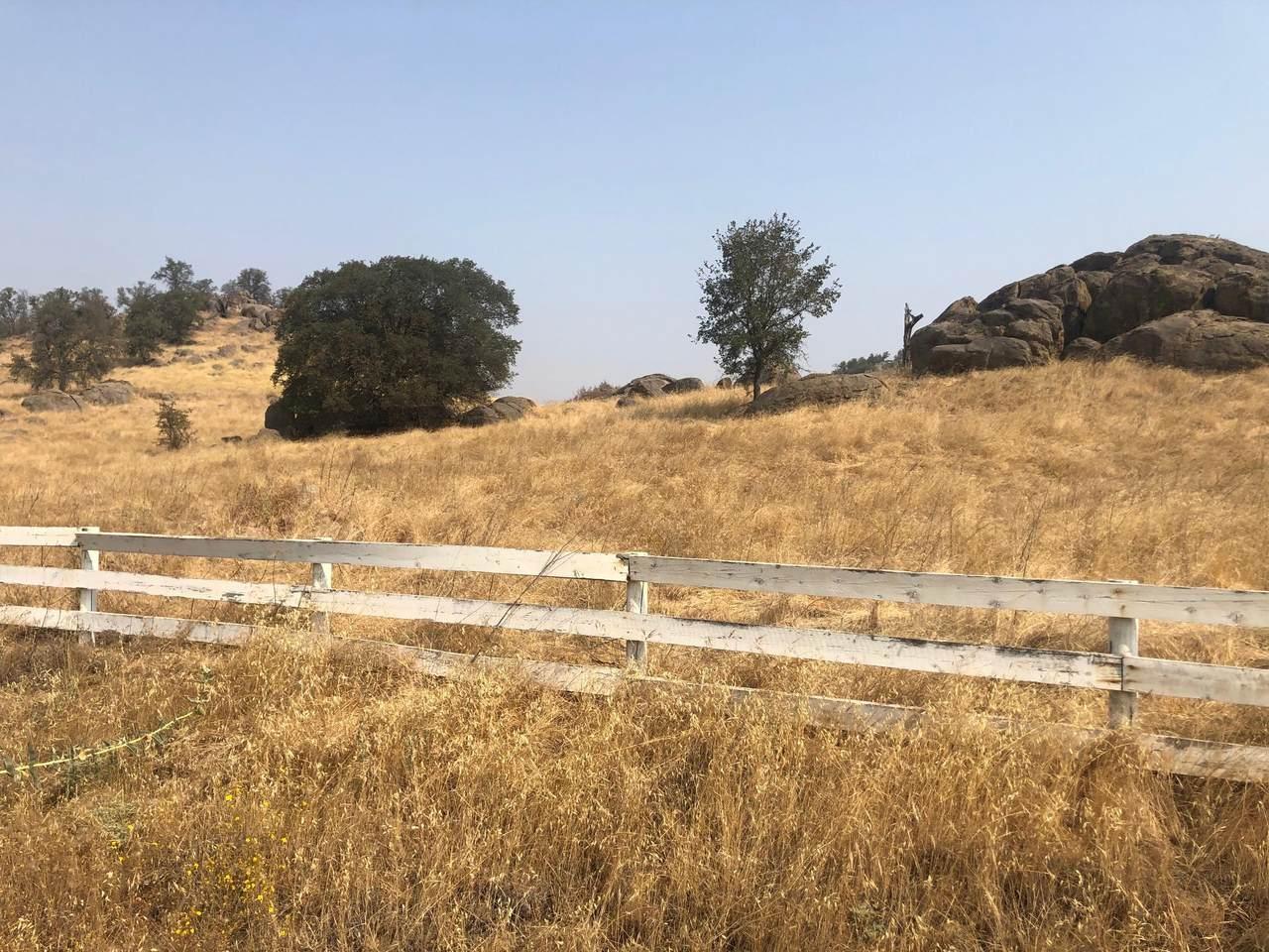 16988 Coyote Drive - Photo 1