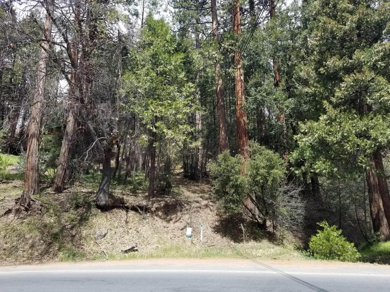 349 Mariposa Drive - Photo 1