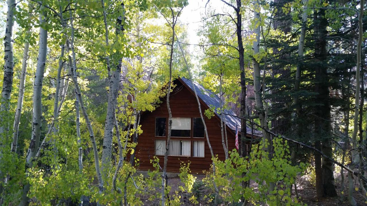 56904 Pine Drive - Photo 1