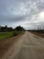43104 Road 124 - Photo 44