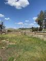 Vacant Lot Mulberry - Photo 1