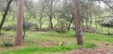 2 Lots On Rabbit Foot Trail - Photo 4