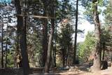 52808 Alpine Drive - Photo 7