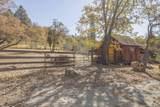 49350 Todd Eymann Road - Photo 35