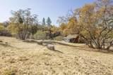 49350 Todd Eymann Road - Photo 48