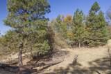49350 Todd Eymann Road - Photo 50