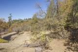 49350 Todd Eymann Road - Photo 52