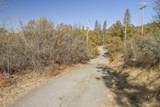 49350 Todd Eymann Road - Photo 54