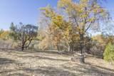 49350 Todd Eymann Road - Photo 57