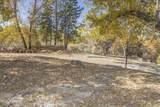 49350 Todd Eymann Road - Photo 58