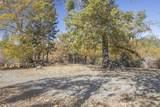 49350 Todd Eymann Road - Photo 59