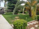 1563 Palomino Street - Photo 40