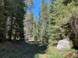 None   --- ---        Western Divide Hwy - Photo 6