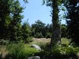 44994 Fork Drive - Photo 7