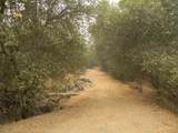 South Fork Drive - Photo 5