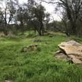 Sierra Drive - Photo 1