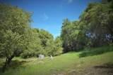 46139 Safari World Drive - Photo 12