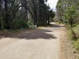 349 Mariposa Drive - Photo 8