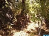56874 Aspen Drive - Photo 3