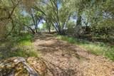 43429 Sierra Drive - Photo 50