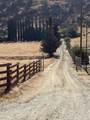 31476 Sierra Drive - Photo 2