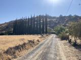 31476 Sierra Drive - Photo 3
