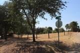 33359 Tule Oak Drive - Photo 4