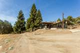 51083 Whitaker Forest Road - Photo 7