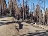 55114 Alder Drive - Photo 1