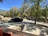 44202 Pine Flat Drive - Photo 16