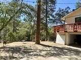 44202 Pine Flat Drive - Photo 24