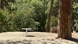 44202 Pine Flat Drive - Photo 26