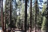 54866 Redwood Drive - Photo 6