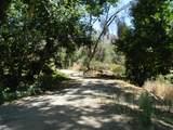 44994 Fork Drive - Photo 48