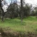 43368 Sierra Drive - Photo 10